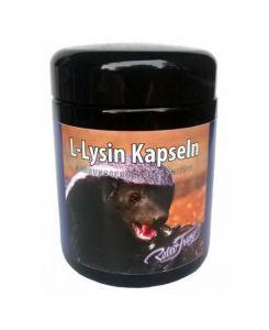 L-Lysin RF