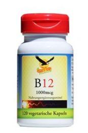 Vitamin B12 Kapseln -Methyl-Cobalamin