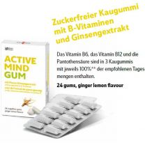 "SMART GUM ""ACTIVEMIND GINSENG"""