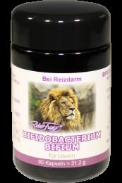 Bifidobacterium Bifium – Für Löwen – 60 Kapseln